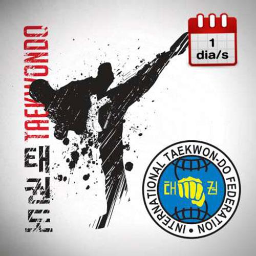 Taekwondo 1r a 2n  2d/s DL/DX